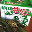 謙信笹団子(笹だんご)10個化粧箱入