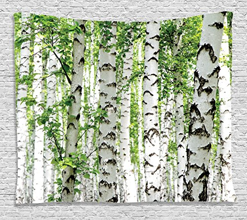 Forest Tapestry Wall Hanging by Ambesonne, Birch Trees in the Forest Summertime Wildlife Nature Themed Decorating Picture, Bedroom Living Room Dorm Decor, 80 W X 60 L Inches, White Green