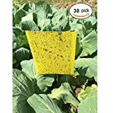 30 pcs Double-Sided Sticky Insect Traps, Sticky Traps, Yellow Sticky Papers for White Flies, Aphids, Leaf Miner, Moths and Fungus Gnats