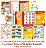 Spanish Language School Poster - Alphabet, Alfabeto