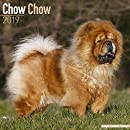 Chow Chow Calendar - Dog Breed Calendars - 2018 - 2019 Wall Calendars - 16 Month by Avonside