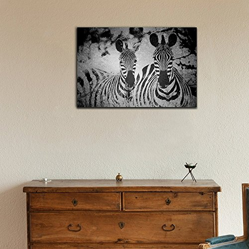 Animal Theme Two Zebras on Grunge Background in Black and White Stretched