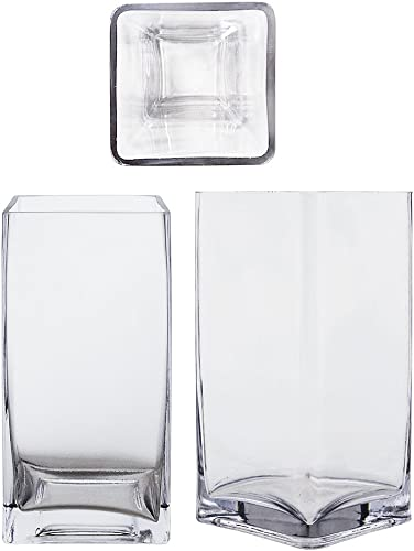 Mega Vases Square Cube 4 Inch x 8 Inch, Decorative Clear Glass Vase with Sturdy Base, Wedding Centerpieces, Flower Bouquets, Home Decor, Celebrations, Parties, Event Planning, Arts Crafts