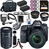 Canon EOS 6D Mark II DSLR Camera with 24-105mm f/3.5-5.6 Lens 1897C021 + Canon EF-S 55-250mm Lens + LPE-6 Lithium Ion Battery + 128GB SDXC Card + Canon 100ES EOS shoulder bag + Tripod + Flash Bundle