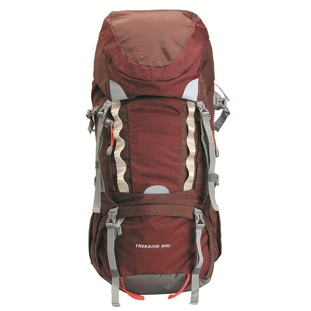 アウトドア登山バッグ60Lスクラッチ耐性ハイキングキャンプハイキングバッグ(青) (色 : B)  B B07GZJ4QR4