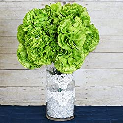 Efavormart 36 pcs Extra Large Artificial Carnations Flowers for DIY Wedding Bouquet Centerpiece Arrangement Decoration - Lime Green