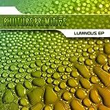 Luminous (feat Alyssa Palmer) - Original Mix