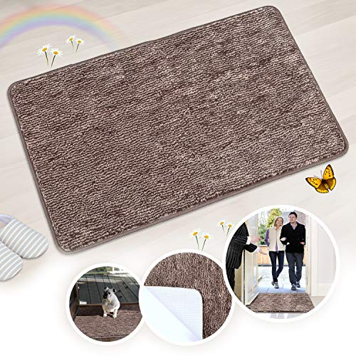 Indoor Doormat Front Door Mat Non Slip Rubber Backing Super Absorbent Mud and Snow Magic Inside Dirts Trapper Mats Entrance Door Rug Shoes Scraper Machine Washable Rug Carpet - Coffee
