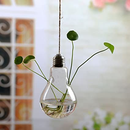Amazon Hanging Glass Vase Small Cute Rope Hanging Planter