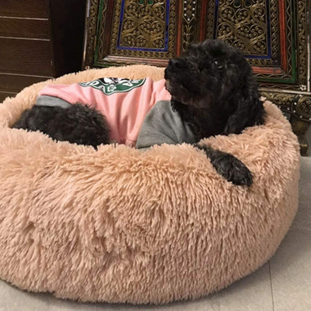 Camas para gatos Cama suave para perros con funda extraíble Cojín para perros de piel artificial tamaño King sofá ortopédico para mascotas sofá canasta para perros puede sentarse perro grande-XXL-gri