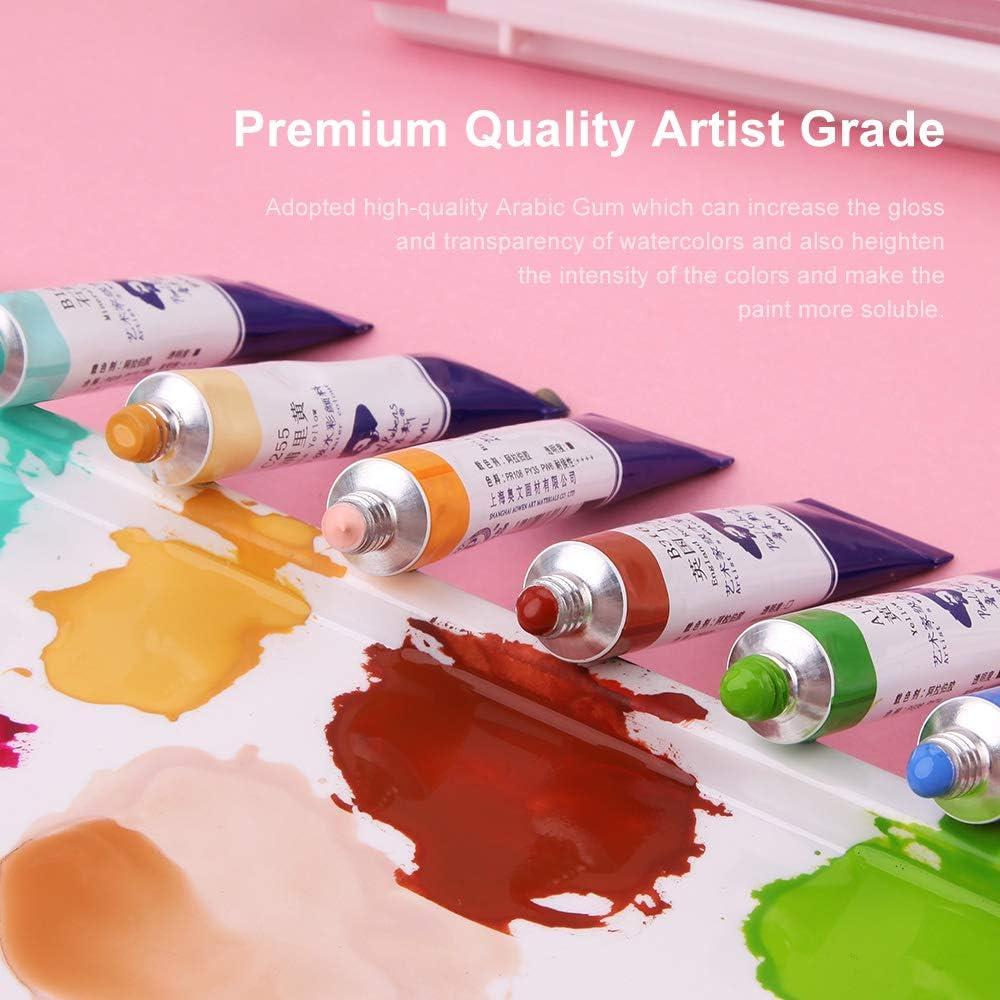 24 Colors x 8ml Tubes Artist Grade Watercolor Paint Set Paul Rubens  Watercolor Tubes Professional Perfect