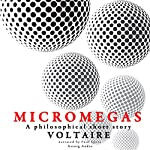 Micromegas: A philosophical short story |  Voltaire