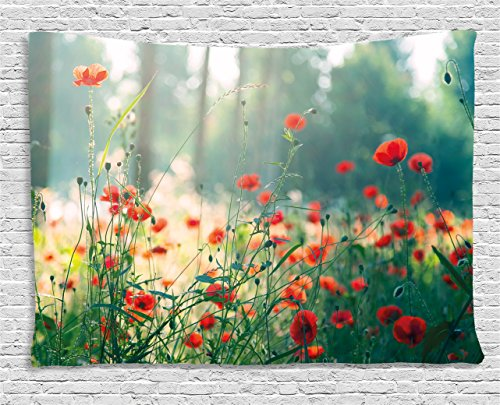 Ambesonne Nature Tapestry, Wild Red Poppy Flowers Field Summertime Sunbeams Gardening Bedding Plants, Wall Hanging for Bedroom Living Room Dorm, 60 W X 40 L Inches, Red Green Yellow - Poppy Field Gift