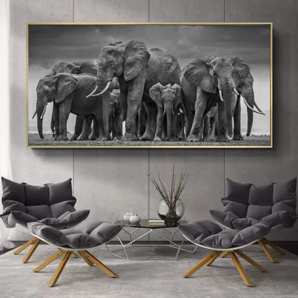 NIMCG Cartel de persecución de Elefante Africano Negro ...