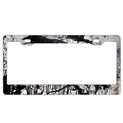 41515ef803a5 License Plate Gothic Raven License Plate Holder Durable Car Tag 6 ×  12 quot  with 2