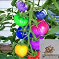 Bigfamily 100pcs Very Rare Imported Rainbow Tomato Seeds Bonsai Fruit Vegetable Seeds Non Gmo Potted Plants For Home Garden