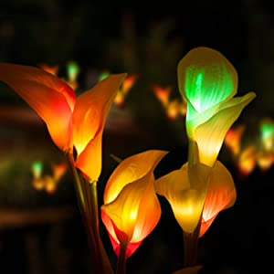 Marcoah Upgraded Solar Flower Lights - Outdoor Waterproof LED Flowers for Garden, Path, Landscape, Patio, and Lawn | Yellow and White Calla Lily - 2 Pack