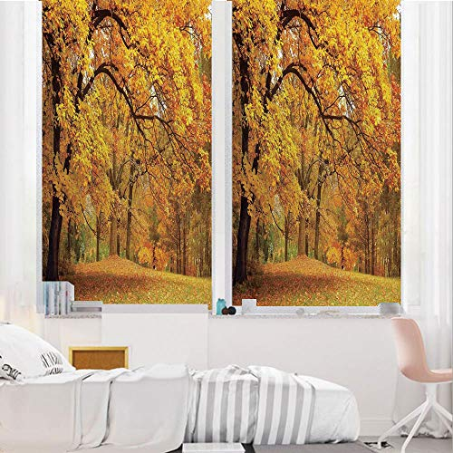 Farm House Decor 3D No Glue Static Decorative Privacy Window Films, Gold Fall Scenery with Pale Maple Leaves in The Forest November Season Woodlands,24