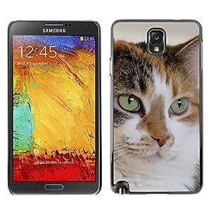 Vortex Accessory Carcasa Protectora Para Samsung Note 3 N9000 N9002 N9005 - Mutt Mongrel Cat House Cat Mixed -