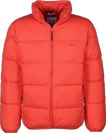 ac9c464b3 Lacoste Winter Jacket  Amazon.co.uk  Clothing