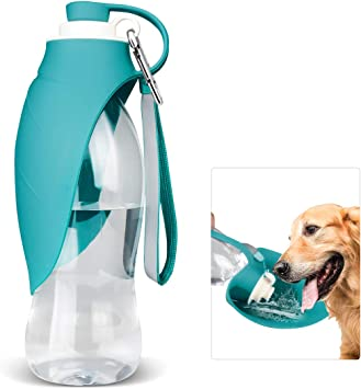 Dog Water Bottle for Walking