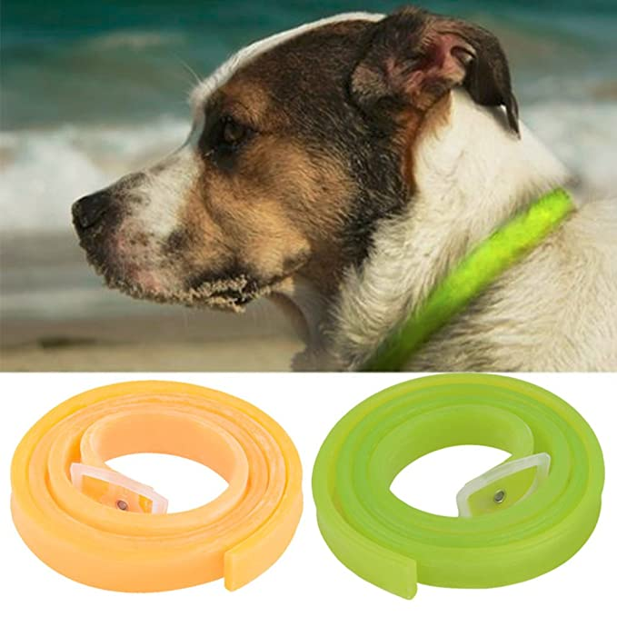UEETEK Collares Antipulgas para Perros Gatos Collar Antiparasitario Ajustable: Amazon.es: Productos para mascotas
