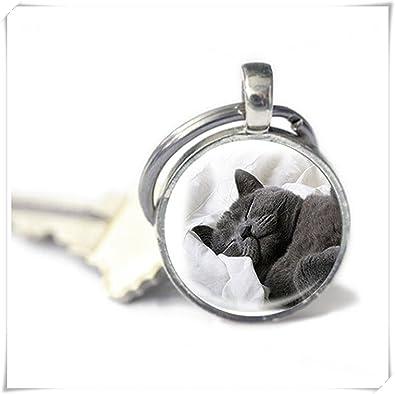 Leonid Meteor Llavero para gato de ducha, llavero del propietario, accesorios para gatos, llavero de foto para gato, hecho a mano, un regalo exquisito.