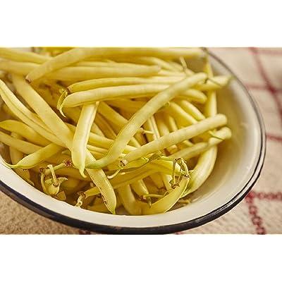 Sow No GMO Bean Bush Golden Wax Stringless Golden Yellow Snap Beans Non GMO Heirloom Garden Vegetable 25 Seeds: Home & Kitchen