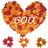 MerryNine 600 Assorted Mixed Deep Fall Colored Artificial Maple Leaves for Weddings, Thanks-Giving, Events and Outdoor Maple Leaf Cafe Decoration (600 Pieces)