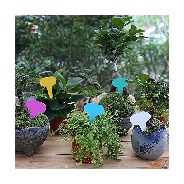 MOPKJH Tag Giardino Impianto di plastica Ecologico Etichette per Piante Spesse Etichette vegetali per Piante da Esterno… 7 spesavip