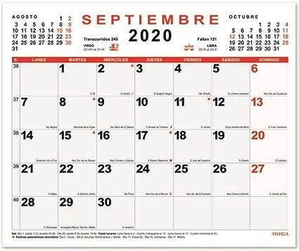 Calendario Mensual Pared MYRGA 2020 (30x24,7 cm): Amazon.es: Oficina y papelería