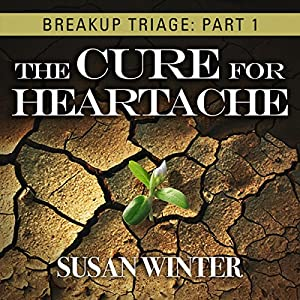 Breakup Triage Audiobook