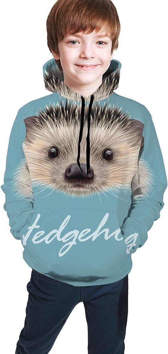 Lichenran Hedgehog Unisex Pullover Teens Hoodie Hooded Sweatshirt Colorful