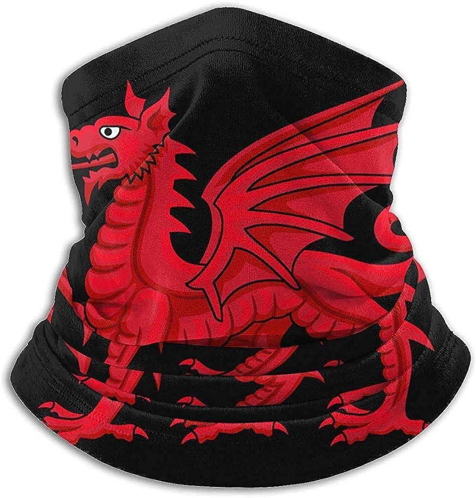 YChoice365 Winter Tube Scarf,Beanie Snood,Face m-ask,Men//Women Bandana,Welsh Dragon Unisex Gaiter,Headbands,Balaclava,Headkerchief,Headwear 50X25Cm