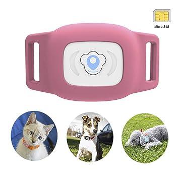 Amazon.com: BARTUN - Localizador GPS para perros y gatos ...