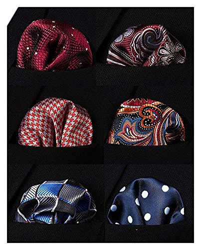 HISDERN 6 Piece Assorted Printing Patterns Men's Pocket Square Handkerchief Wedding Gift HA6001