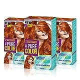 Schwarzkopf PURE COLOR Permanent Gel Coloration No.7.7 GINGER TEMPTATION ( 3er Pack )