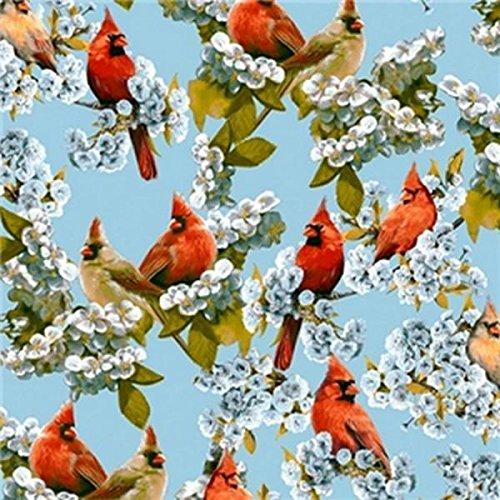 Premium Anti-Pill Cardinals Fleece ()