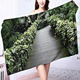 PRUNUS Made of 100% Premium Cotton Scenic Wooden Pathway in Singapore Botanical Garden Fence Rainforest Tropical Lightweight, High Absorbency