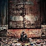 Toxic Pocketbook by Rin Tin Tiger (2012-07-24)