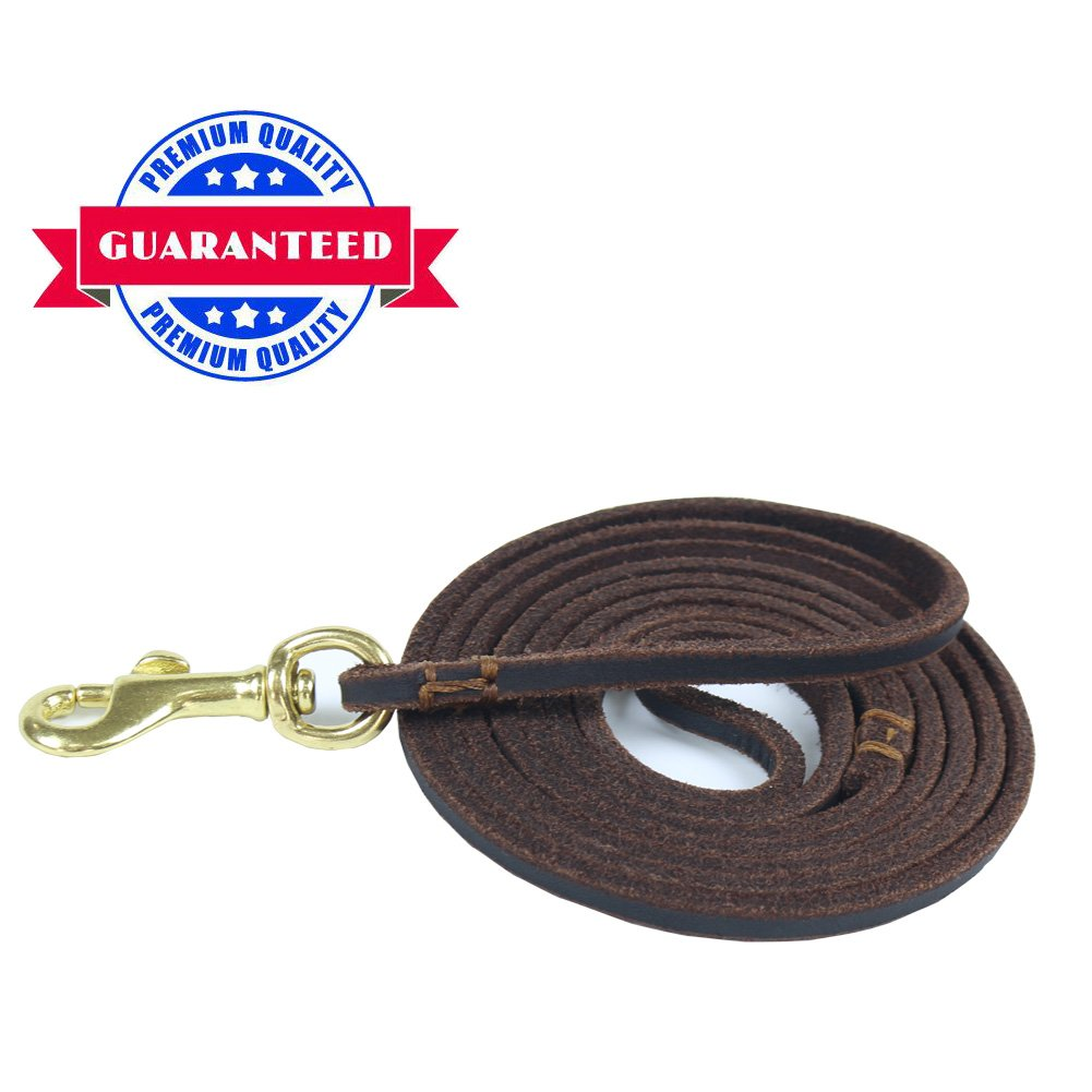 HiCaptain 1/4 inch x 5 feet Thin Leather Pet Leash, Durable Dog Leashes Suit for Small Dog Up to 15 lb