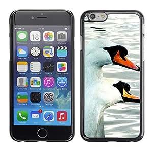 """Print Motif Coque de protection Case Cover // F00001428 animales al aire libre // Apple iPhone 6 6S 6G 4.7"""""""