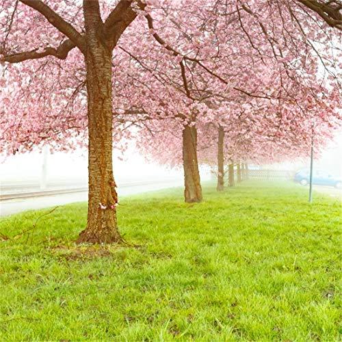Yeele 7x7ft Vinyl Photography Background Spring Scene Cherry Blossoms Tree Outdoor Lane Trod Grass Floors Lawn Mist Meadow Clover Photo Backdrop Studio Props Wallpaper