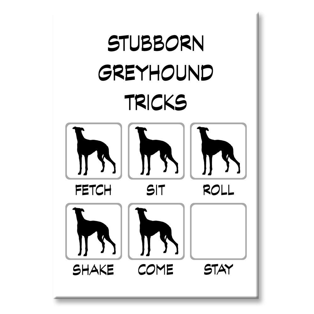 Greyhound Stubborn Tricks Fridge Magnet Wag Whimsy Dog Gifts USA