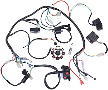 Amazon.com: DishyKooker Electric Wiring Harness Wire Loom CDI Stator  Assembly for ATV Quad 125CC-250CC for Car Accessories: Automotive