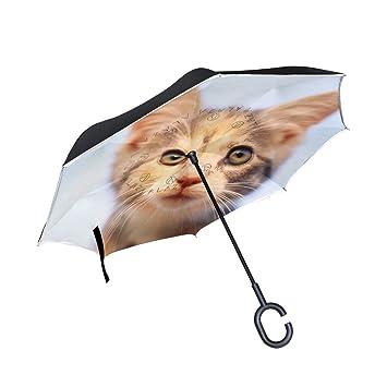 hengpai Animales Gatos Perro Otoño Hojas Invertir Invertido Paraguas Paraguas Coches Unigue Resistente al Viento UV Doble Capa para Mujer, Talla única, ...