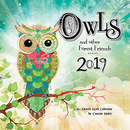 - 2019 Owls  Connie Haley Wall Calendar