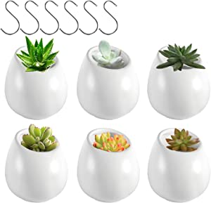 Wall Plant Holder, ZOUTOG 5 inch Round Ceramic Wall Mounted Planters for Indoor Plants, Hanging Succulent Planters with 6 Hooks for Succulent Plants or Air Herb Plants, Pack of 6 - Plants not Included