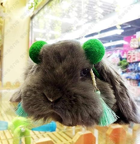 L Pet supplies # 包邮 # 宠物 兔 Tocado de Chunli Prenda de ...