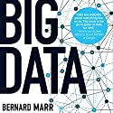Big Data: Using Smart Big Data, Analytics and Metrics to Make Better Decisions and Improve Performance Hörbuch von Bernard Marr Gesprochen von: Piers Wehner